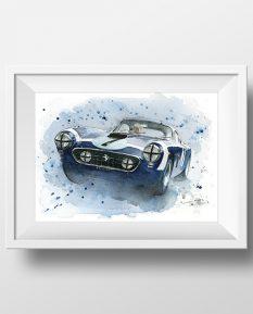 Ferrari-250-SWB-art-print