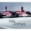 Niki-Lauda-&-James-Hunt-The-rivalry_car-art